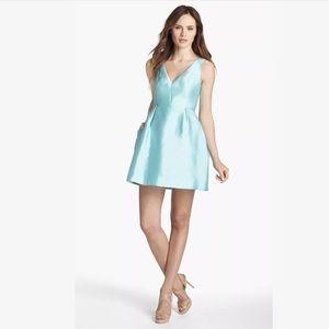 Kate Spade Skater Dress